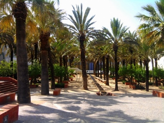 Jardins aquatique
