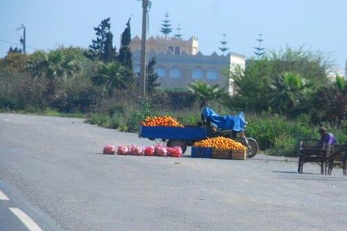 Vendeurs d'oranges
