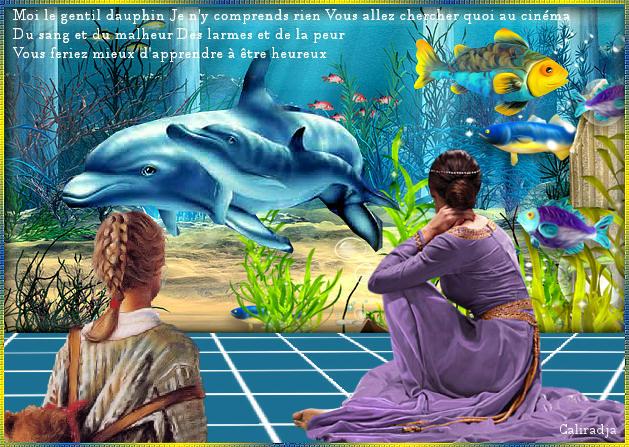 le-gentil-dauphin-triste-de-gerard-lenorman-