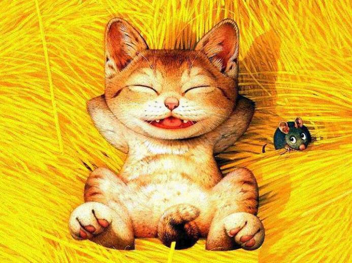 Makoto Cat