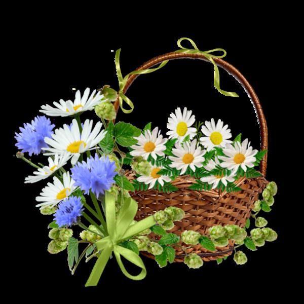Paniers fleuris / 5