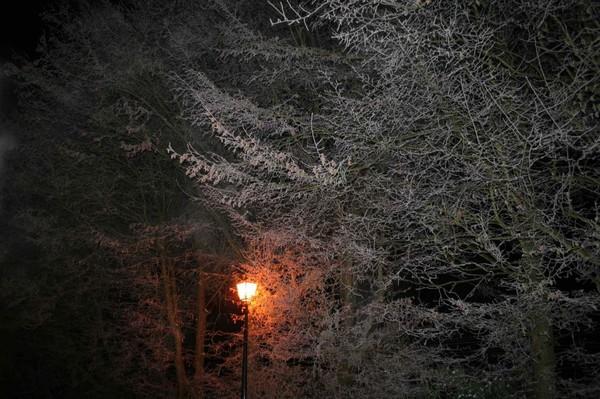 5 images et gifs d'hiver