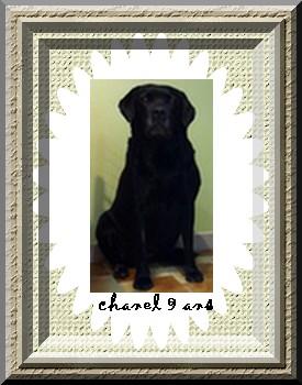 Chanel 9 ans !