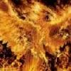 Phoenixus