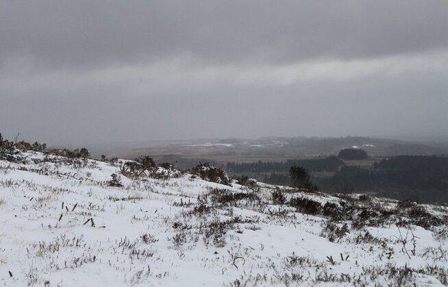 Neige en Monts d'Arrée 077