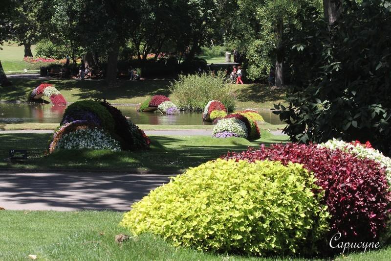 Vent de fantaisie sur le Jardin des Plantes de Nantes