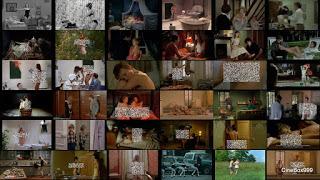 Урок кино от Мишеля Девиля: Обнаженная натура в городе и в деревне / Faire un film: Filmer la nudite en ville et a la campagne / Lesson movie from Michel Deville: Nude in the town and village. 2009.