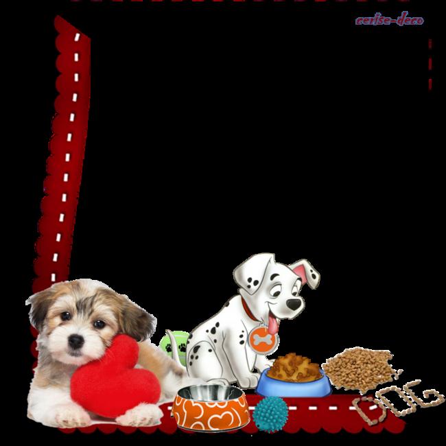 cadeau : cluster chien