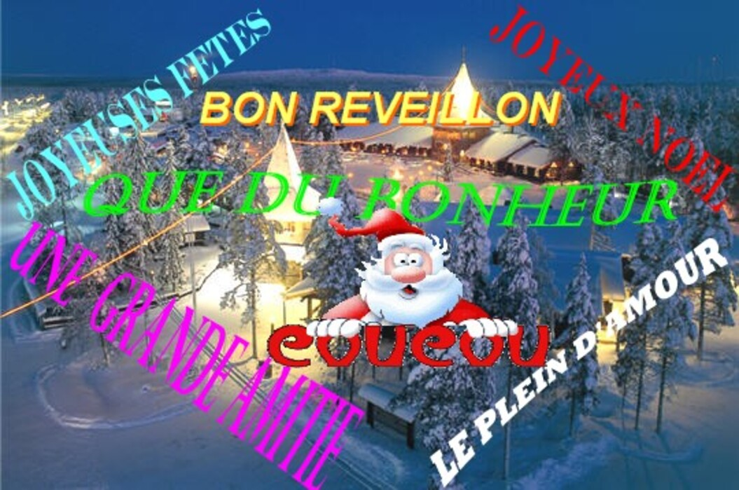 DU JOUR DE L'AN A NOEL  LES FÊTES   24/12/2014