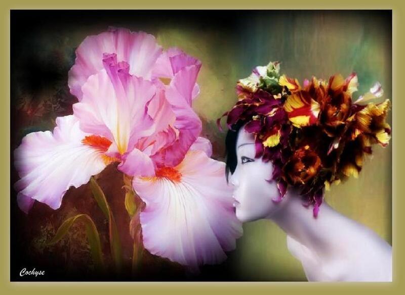 Beauté floral