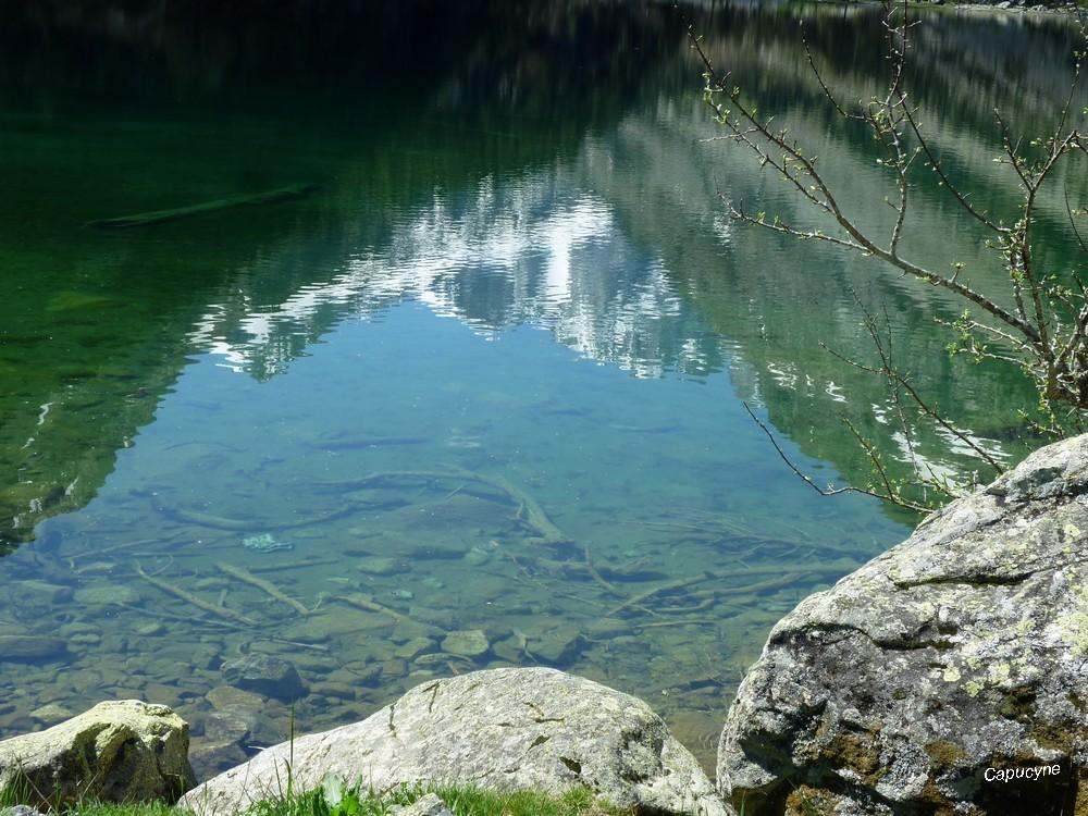 Ascension dans les Pyrénées : le pont d'Espagne