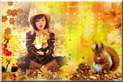 défi Lara0011 '' calendrier de novembre''