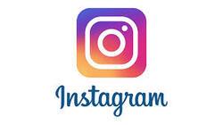 une citadine dans un bled paume sur Instagram