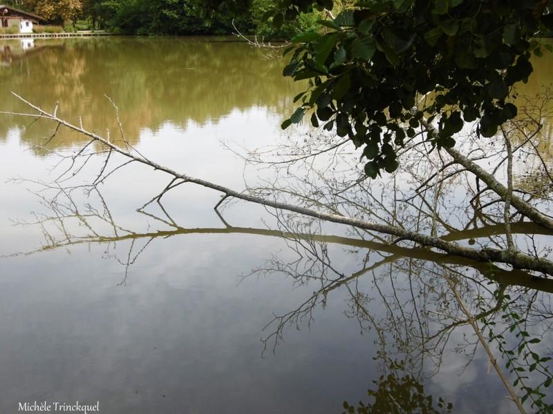 Une balade aux Lacs d'Halco à HAGETMAU (40), le 9 septembre...