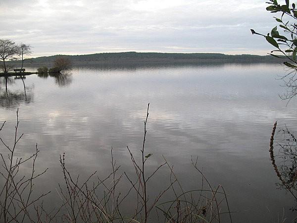 lac de LEON (Landes)11