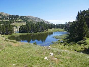 Un autre étang, contigu à la Bassette