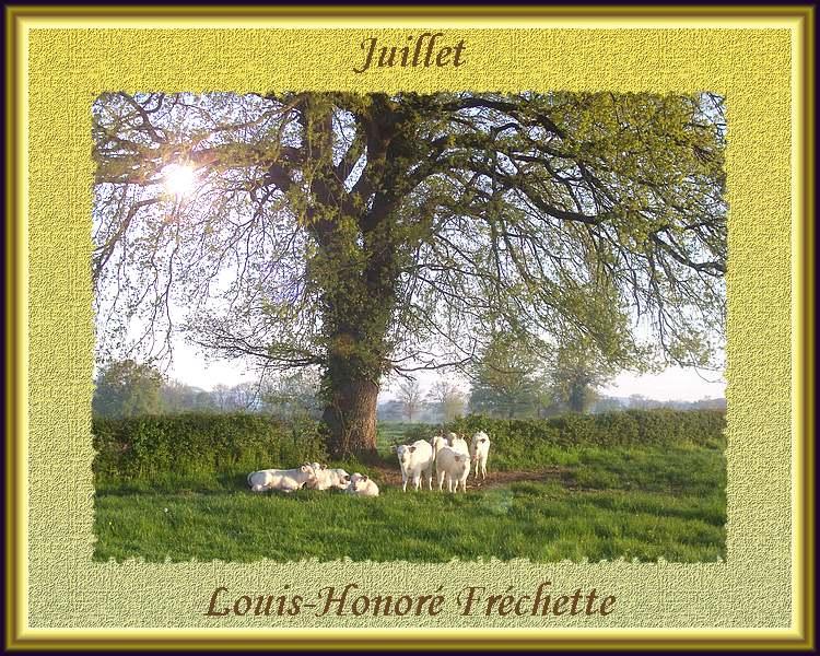 """"""" Juillet """" poème de"""