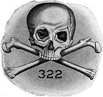 Skull and Bones, on dirait le sud