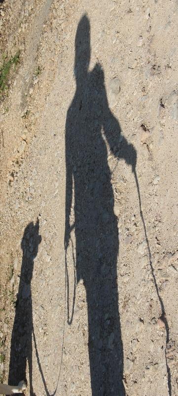 Blog de dyane : Traces de Vie, Heden....et nos ombres