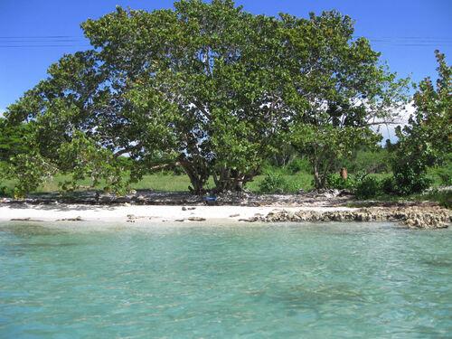 Bahía de Cochinos