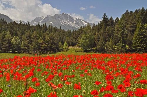 Haute-Maurienne...attachante ....
