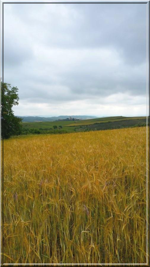 929 - Suite30 : -Notre Chemin vers St Jacques de Compostelle à travers ses anecdotes-