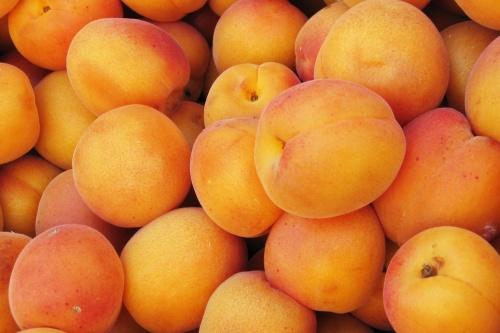des abricots