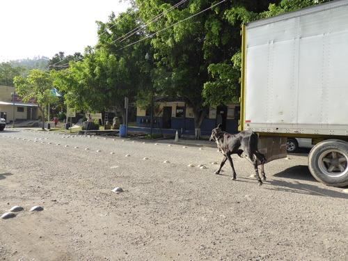 Guatemala, 14ème jour Passage frontière Honduras
