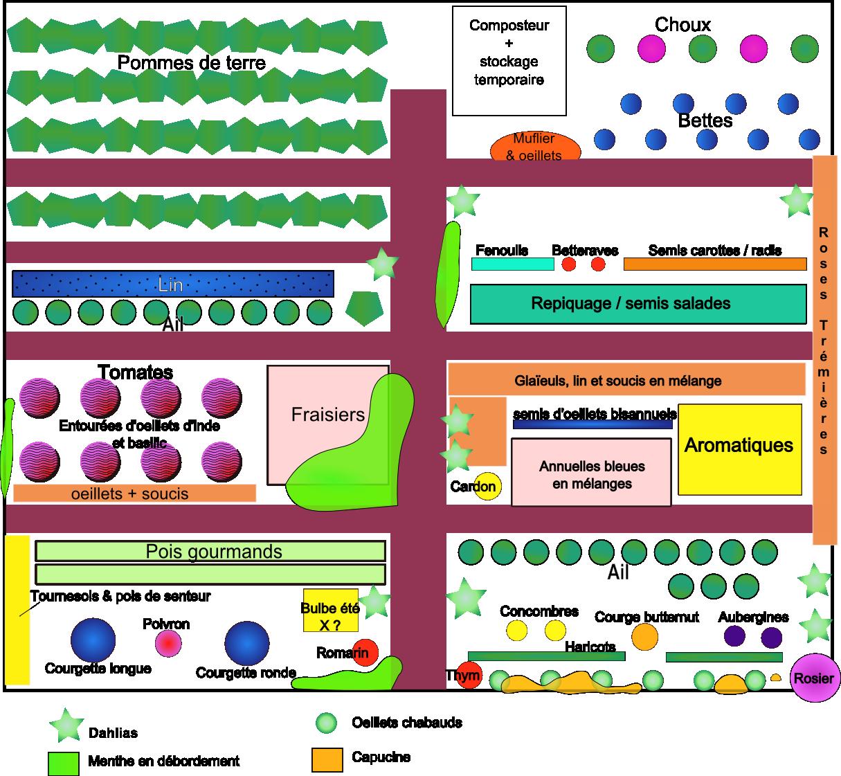 Plan du potager graine de jardin for Potager permaculture plan