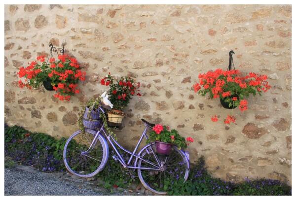 joli vélo fleuri
