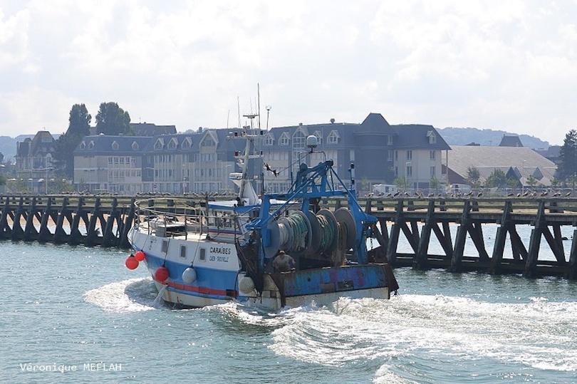 """Calvados : été 2018 : Trouville-sur-Mer : Le """"Caraïbe"""" CN.642582"""