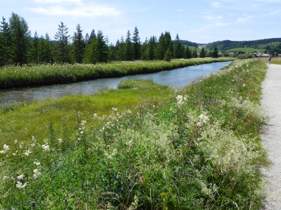 Ballade pour aller à la source du Doubs