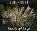 Seeds of Love 2021
