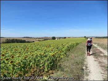 (J2) Auch / Isle de Noé _2 septembre 2013_ (23km) (3)