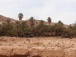 Marabout d'Agadir Lehne