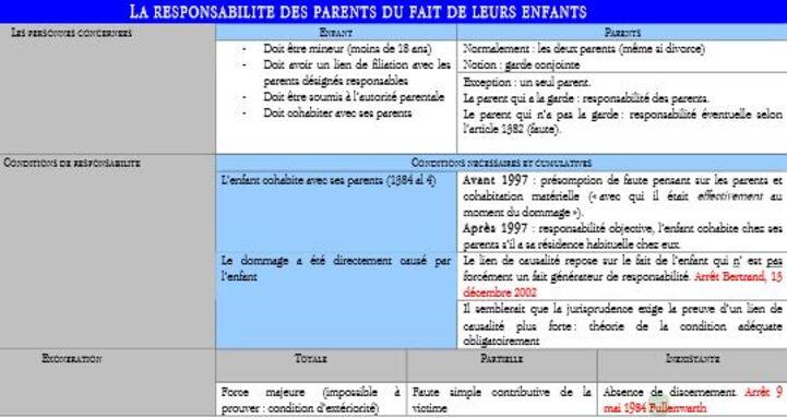 Arrêts sur la responsabilité parentale : Bertrand, Fullenwarth