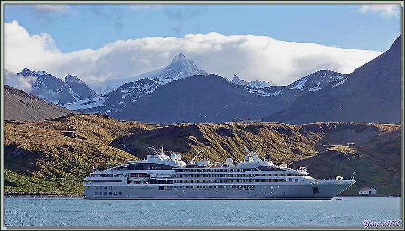 Le Lyrial ancré dans la baie Cumberland - Grytviken - Géorgie du Sud