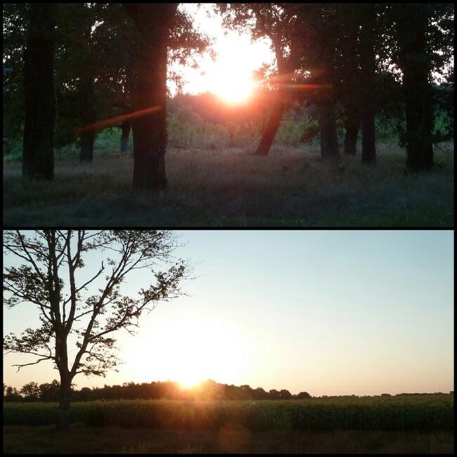 2 beaux couchers de soleil