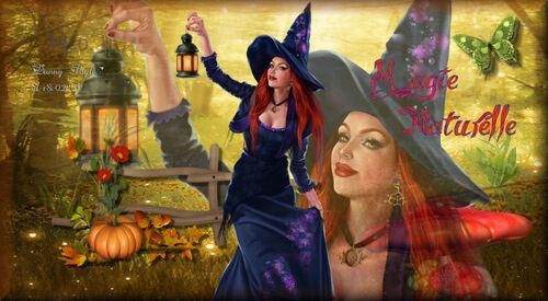 L'Automne et sa Magie