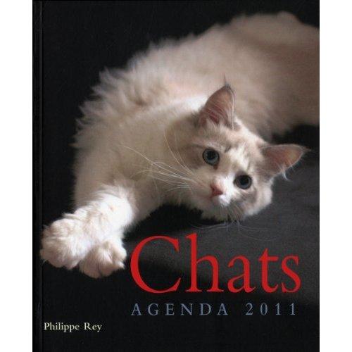 Agenda 2011 :