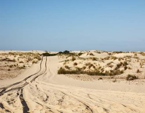Patrimoine mondial de l'Unesco : Le parc national de Coto Donana - Espagne -