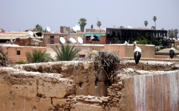 Palais El-Badi 10