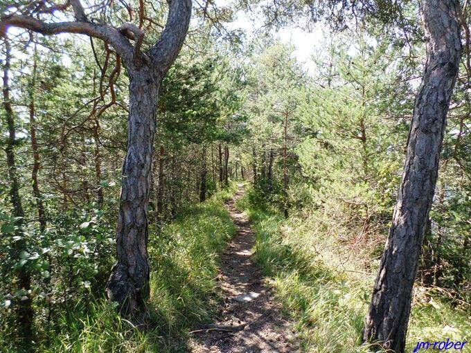 Isère:  Randonnée et descente vers la passerelle du Drac et le lac Monteynard (2/2)
