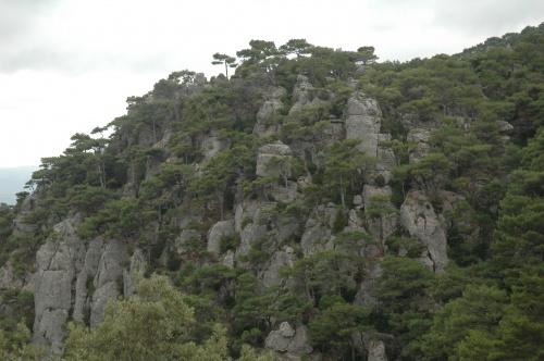 les rochers de saint Guilhem