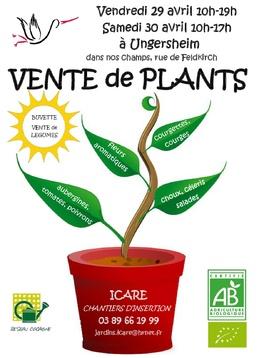 Ventes de plants les 29 et 30 avril 2016