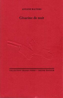 Césarine de nuit, d'Antoine Wauters
