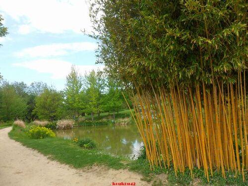 Vernioz. Le jardin du bois marquis (3).