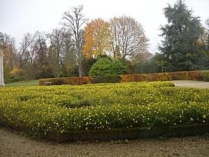 Parterre-fleuri-au-Petit-Trianon.jpg