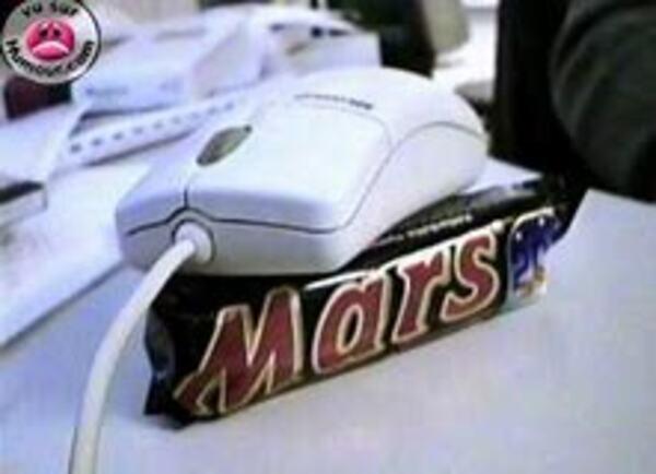 Une souris sur Mars !