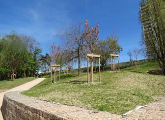 Parc du Vallon à la Duchère Lyon